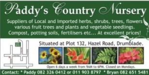 Paddy's Country Nursery